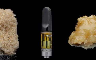 The Different Solventless Rosin and Hash SKUs Your Lab Can Make