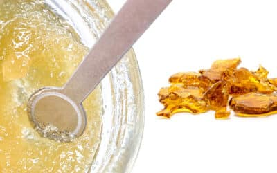 Live Resin vs. Live Rosin: What's the Difference?
